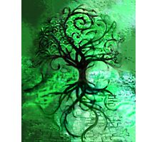 Tree Collage (Green) Photographic Print