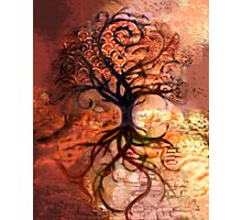 Tree Collage 2 Photographic Print