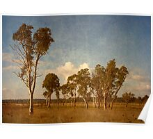 Thunderbolt Country - Uralla, Northern Tablelands, NSW, Australia Poster