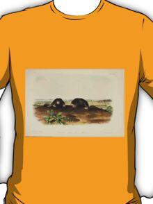 James Audubon - Quadrupeds of North America V2 1851-1854  Common Star Nose Mole T-Shirt