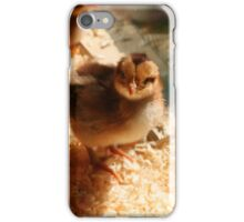 Inquisitive Chick iPhone Case/Skin