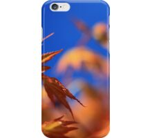 Acer Against A Blue Sky.  iPhone Case/Skin