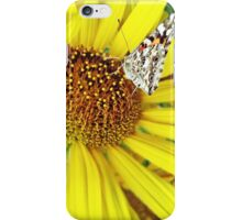 Butterfly on Yellow iPhone Case/Skin