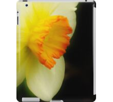 The Beauty Within - Dedicated to Autumnwind  iPad Case/Skin