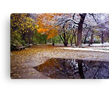 Seasons Changing in the Park Canvas Print
