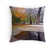 Seasons Changing in the Park Throw Pillow