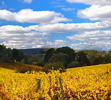 autumn in the hills by Jessy Willemse