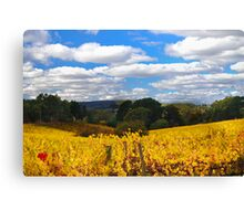 autumn in the hills Canvas Print