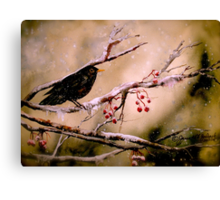 It Was Evening All Afternoon... Canvas Print