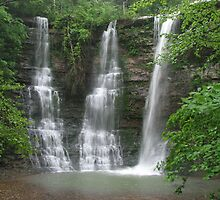 Twin Falls With an Added Touch, Arkansas Buffalo Wilderness Area by NatureGreeting Cards ©ccwri