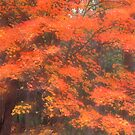 Autumn Canticle by sundawg7