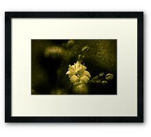 Precious Framed Print