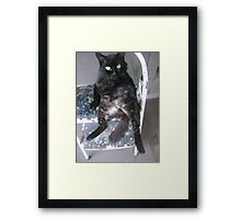 Dont look at my bald spot. Framed Print