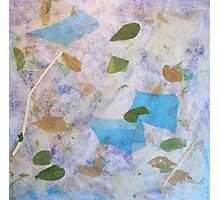 Balance by Holly Cannell - A Collage Photographic Print