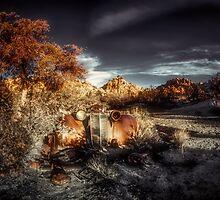 Dawn's Early Light by Steve Walser