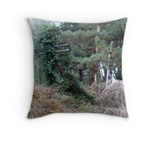 abandoned railway Throw Pillow