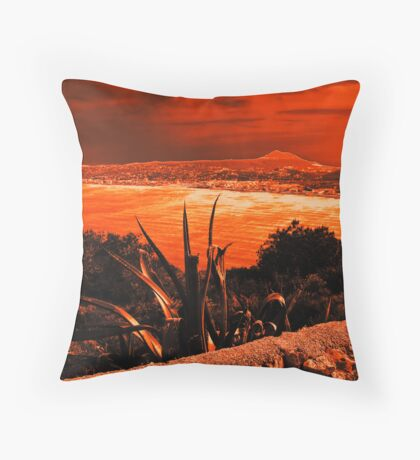 Orange Coast Throw Pillow