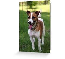 Loud Parson Russell Terrier Greeting Card