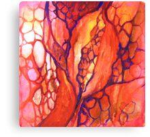 Warm Pods Canvas Print