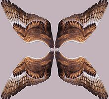 Barn Owl Wing Scarf by JonseyJones