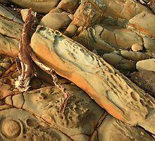 montagu sandstone  by phillip wise