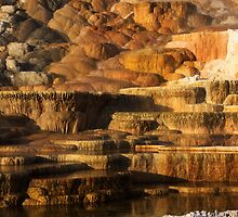 Mammoth Hot Springs, Yellowstone National Park by DArthurBrown