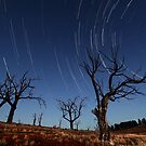Star Trails Old Adaminaby by Annette Blattman