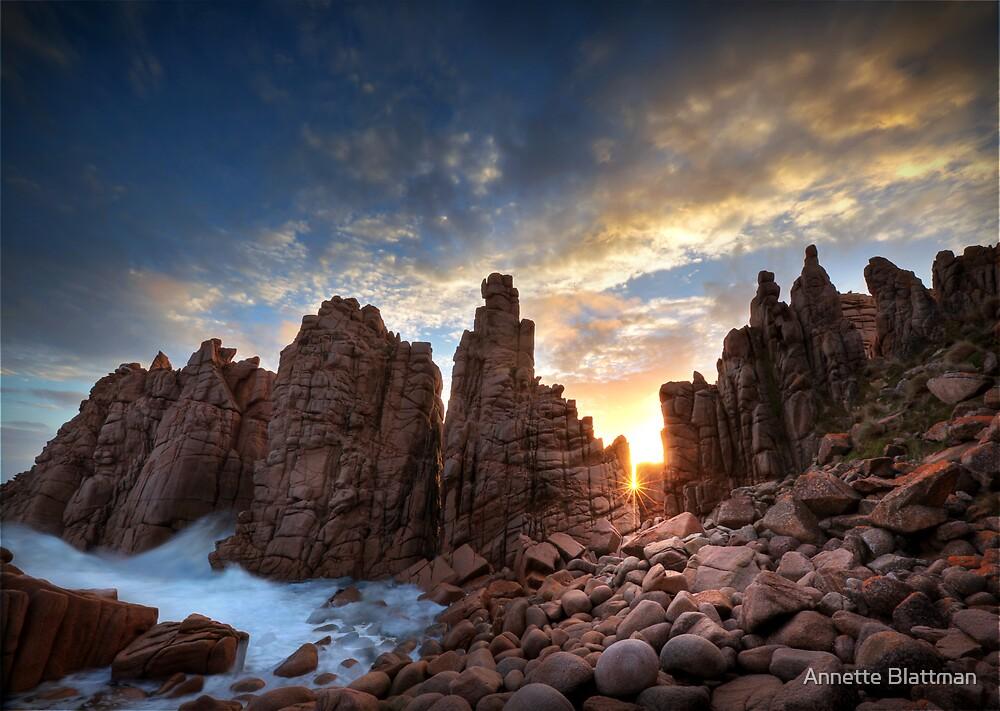 Sunburst at Pinnacles by Annette Blattman