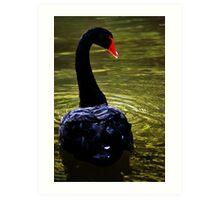 Swan River Art Print