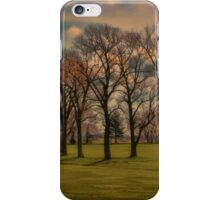 Grove of Trees iPhone Case/Skin
