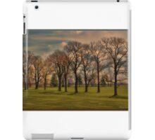 Grove of Trees iPad Case/Skin