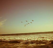 Fly Away by manabita110
