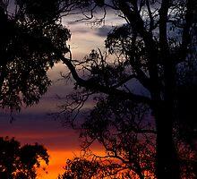 As the Morning Awakes... by GerryMac