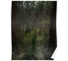 Through The Veil Poster
