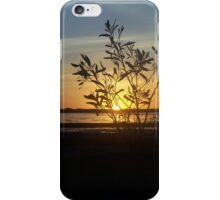 Seagull at Sunset iPhone Case/Skin
