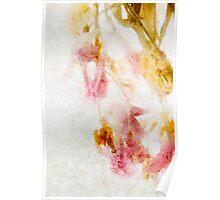 Tulip Glow - Textured Poster