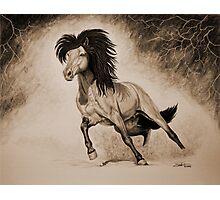 """A Free & Untamed Spirit"" - Sepia version Photographic Print"