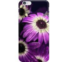 Purple Petals with Bee iPhone Case/Skin