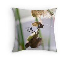 Little Spiderhunter 2 Throw Pillow