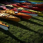 paddlefest 1 by Bill vander Sluys