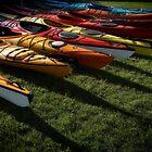 paddlefest 1 by Bill vander Sluys