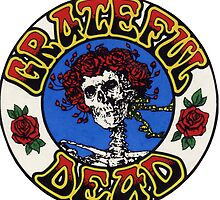 Grateful Dead Roses by gotzeke