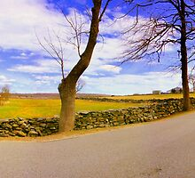 Bend In The Road by rtographsbyrolf