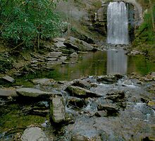 Downstream at Looking Glass Falls, NC by Harry Hoover