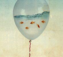 balloon fish by vinpez