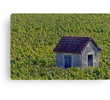 Vineyard Hut Canvas Print