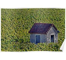 Vineyard Hut Poster