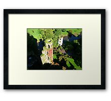 VIEW FROM BLARNEY Framed Print