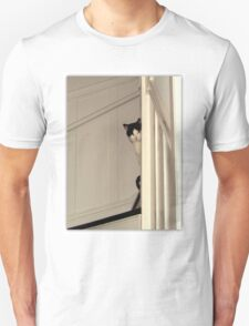 Scaredy Cat - Max T-Shirt