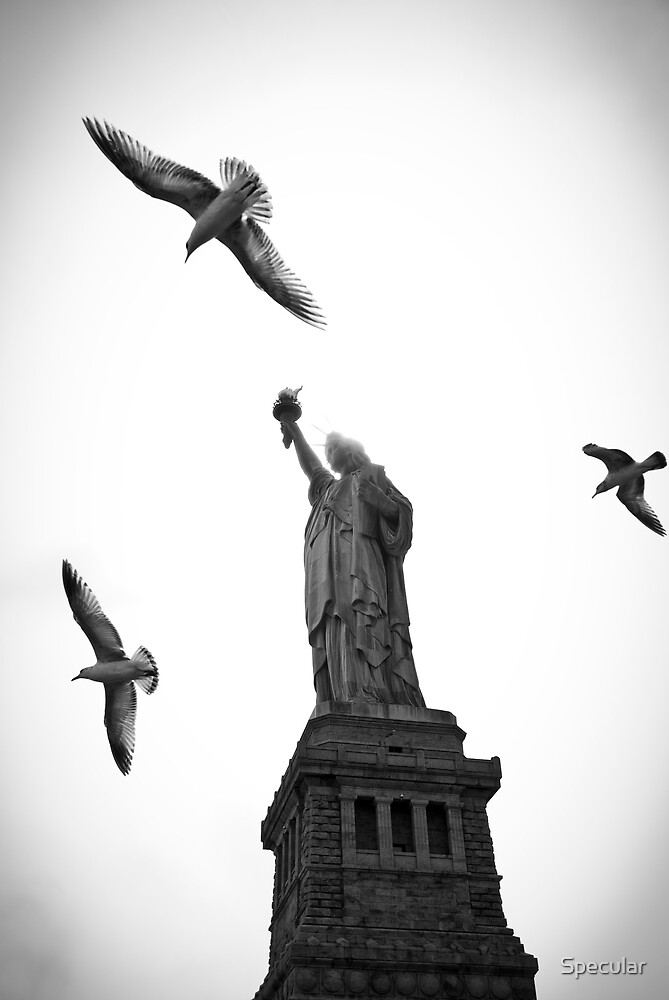 NYC 16 by Specular